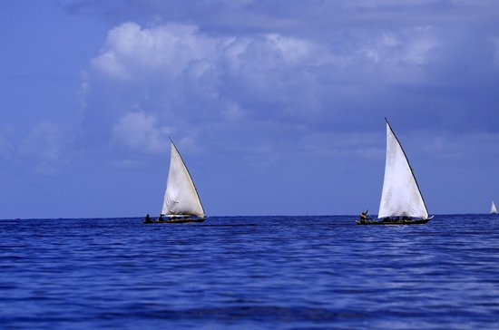 Zanzibar Retreat Hotel: Local fishing boats