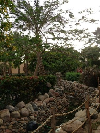 Nubian Island Hotel: Gardens around the bungalows