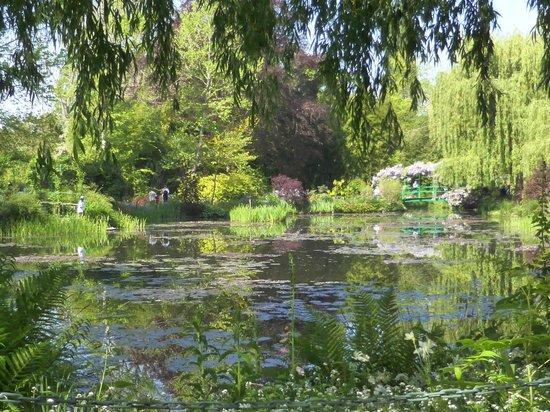 Maison et jardins de Claude Monet : Monet's lilly pond 6