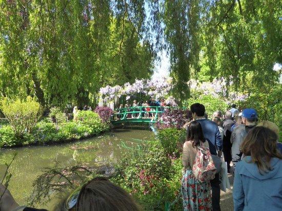 Maison et jardins de Claude Monet : Monet's lilly pond 8