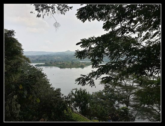 Explorers River Camp: From my tent, looking over the Nile River