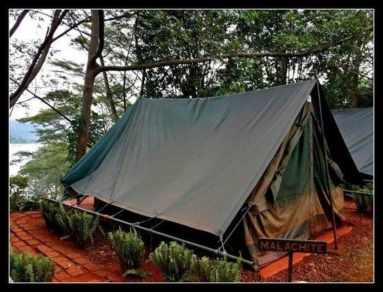 Explorers River Camp: The tent