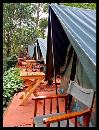 Explorers River Camp: Tables and chairs outside tents