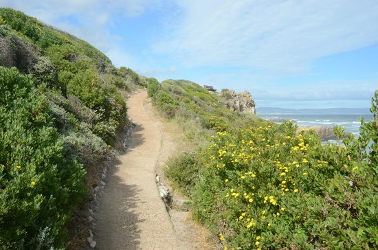 Fernkloof Nature Reserve: Walk to benches on the Cliff Path