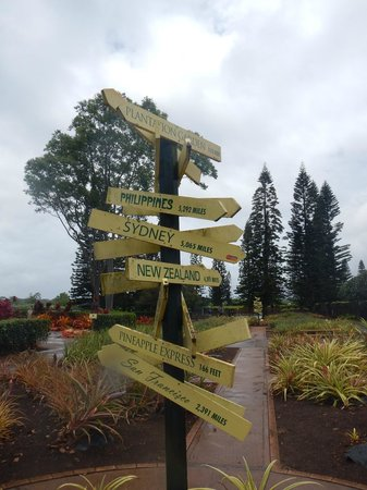 Sign at Dole Plantation
