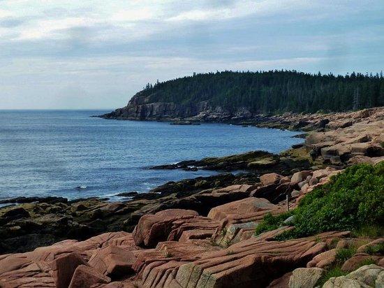 Ocean Trail: Beautiful seashore