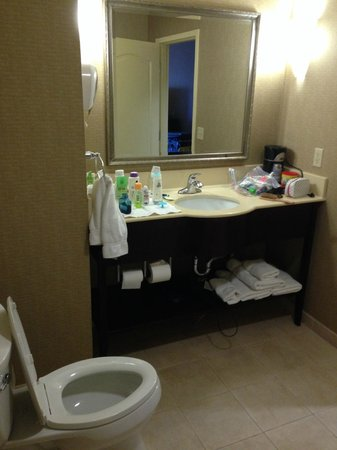 Holiday Inn Express Hotel & Suites Hollywood Hotel Walk of Fame: vanity mirror and toilet