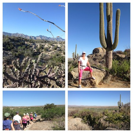 Miraval Arizona Resort & Spa : Morning Hike