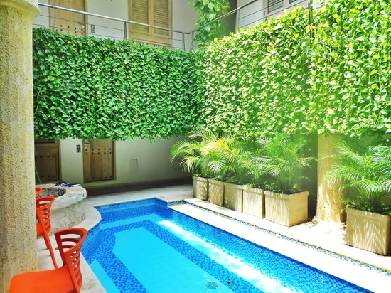 Casa Canabal Hotel Boutique : Interior Courtyard Pool - First Floor