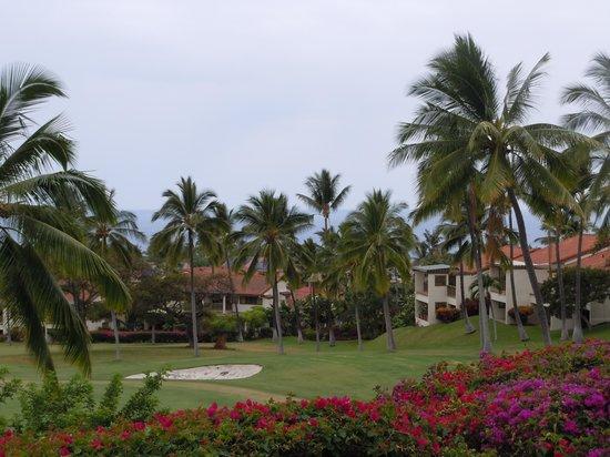 Kona Coast Resort: The resort grounds