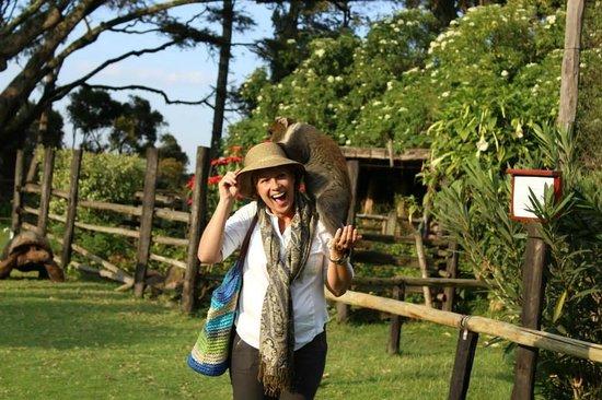Fairmont Mount Kenya Safari Club: Happy Happy Times