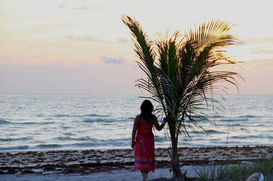 Barrett Beach Bungalows: Sunset in Indian Shores