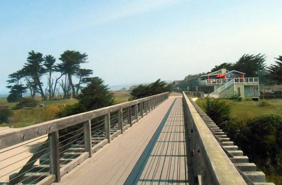 The Beachcomber Motel and Spa on the Beach: From Pudding Creek bridge on beach walk.
