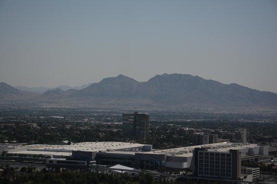 The Palazzo Resort Hotel Casino: view
