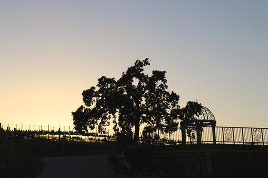 Vino Bello Resort: Walking trail