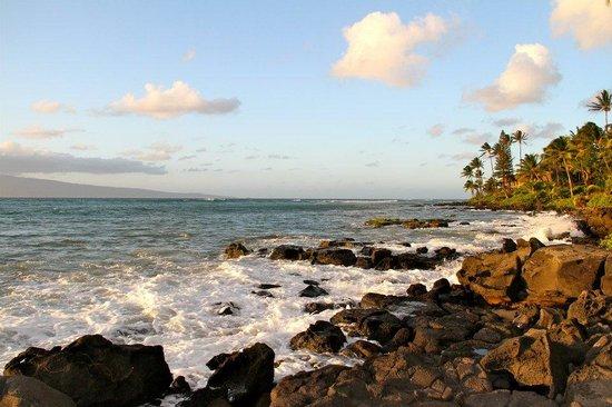Polynesian Shores Condominiums: Ocean view