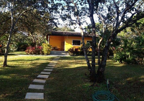 Playa Negra, Costa Rica: Los Nancities