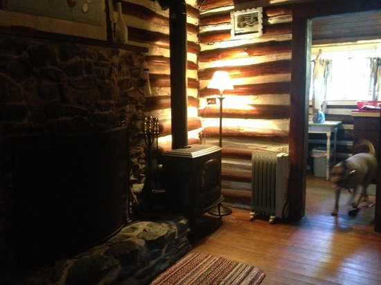 Log Cabin Motor Court : Fireplace