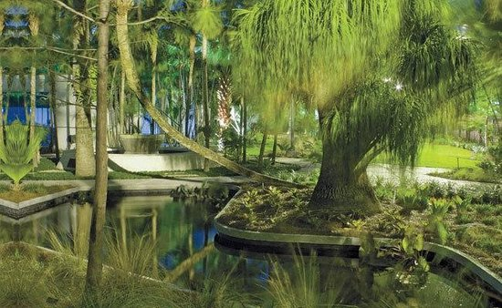 Miami Beach Botanical Garden : Image:(c)Robin Hill