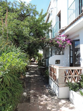 Hotel Finca el Cerrillo: morning sun