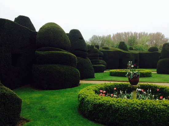 Billesley Manor Hotel : Topiary