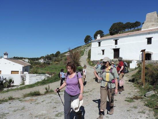 Hotel Finca el Cerrillo: walking