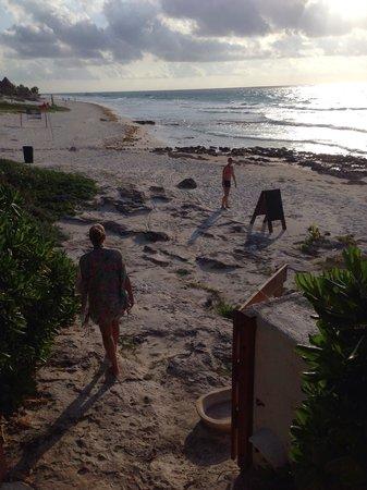 Mezzanine Colibri Boutique Hotel: Our morning walk down the beach