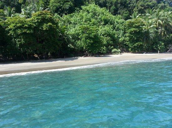 Casa Corcovado Jungle Lodge: Cano Island
