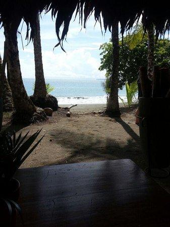 Casa Corcovado Jungle Lodge: The Beach