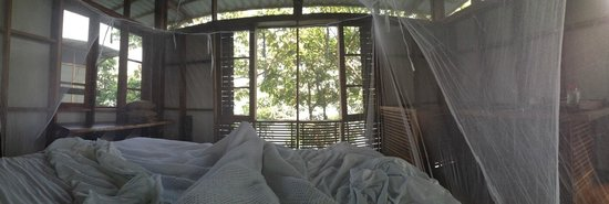 Jicaro Island Ecolodge Granada: Waking up to monkeys, room with a view