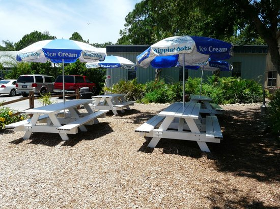 Brevard Zoo: Picnic Area just outside of the park, so you can bing a picnic lunch or eat at the Flamingo Cafe