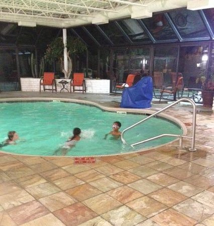 Holiday Inn Express Mesa Verde-Cortez: Indoor pool