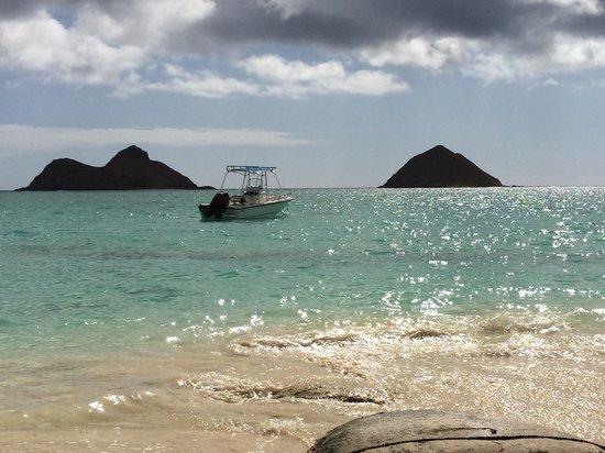 Lanikai Beach Rentals LLC : Lovely Lanikai Beach.  5/14
