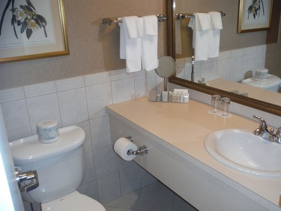 The Lord Nelson Hotel & Suites: Clean and modern bathroom