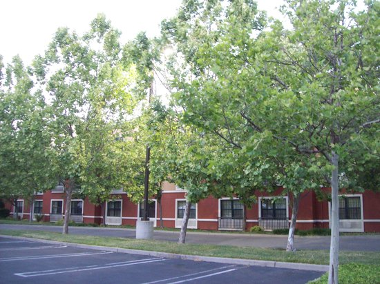 Extended Stay America - San Ramon - Bishop Ranch - West: Back side of facility with much extra parking