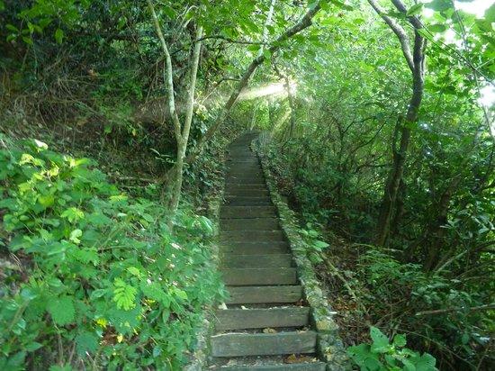 Alila Villas Uluwatu: stairway from beach back to hotel