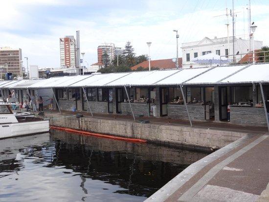Hafen von Punta del Este: barracas de pescadores