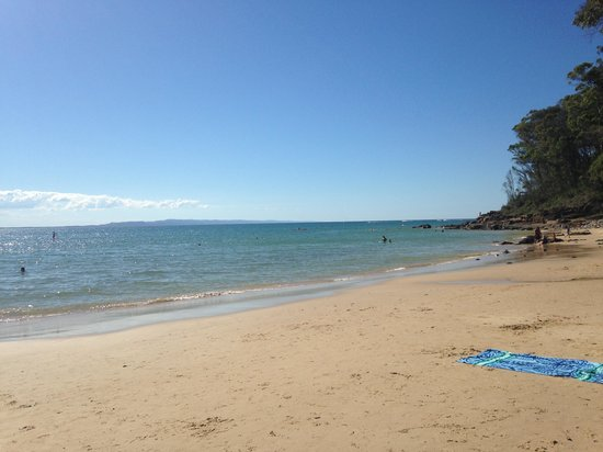 This photo of Little Cove, Noosa is courtesy of TripAdvisor