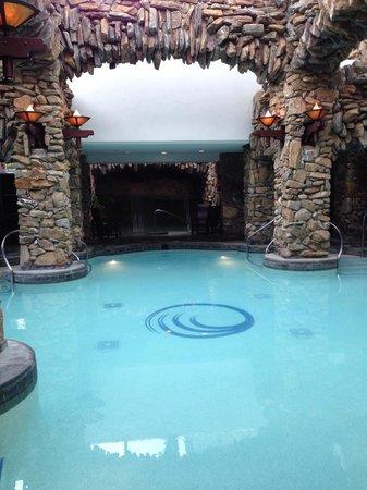 The Omni Grove Park Inn : Spa pools