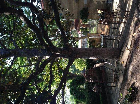 Das Garten Haus Bed and Breakfast: View from apt. across courtyard to junior suite