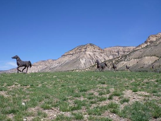 Kessler Canyon, Autograph Collection : The Kessler horses signal you are near the lodge.
