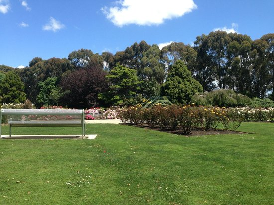 Victoria Esplanade Gardens: Fountain with nearby bench