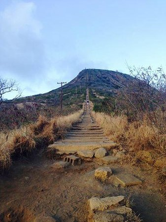 Koko Crater Trail: Steep climb-worth it for the workout and views