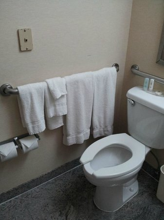 Comfort Inn Times Square South : Towels next to toilet