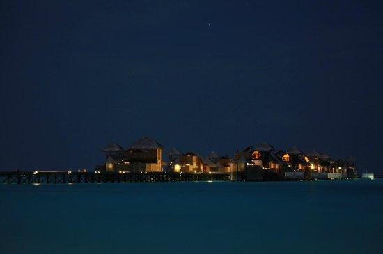 Gili Lankanfushi Maldives : Gili by night