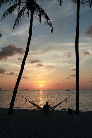 Gili Lankanfushi Maldives : Hammock during sunset