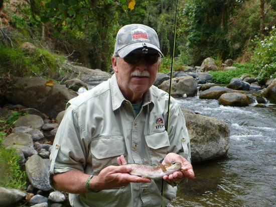 Savegre Hotel, Natural Reserve & Spa : Small but aggressive rainbow trout.