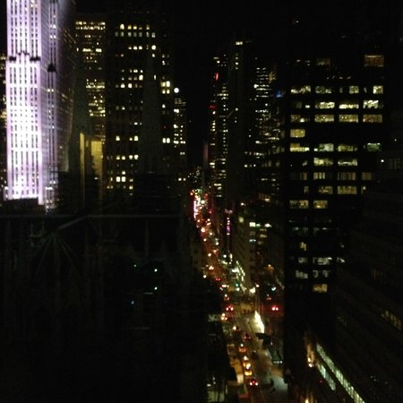 Lotte New York Palace: view
