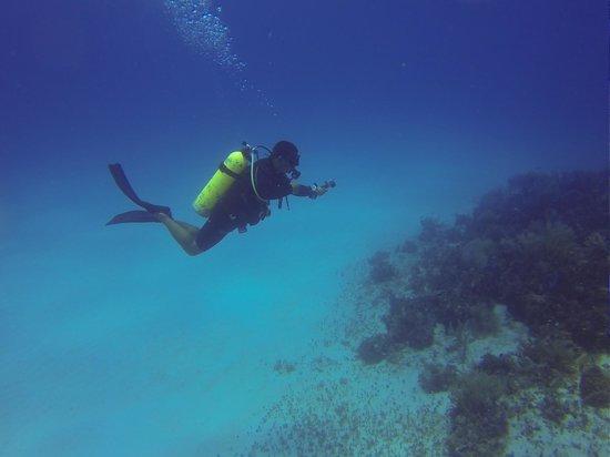 Doctor Dive Costa Maya: 6