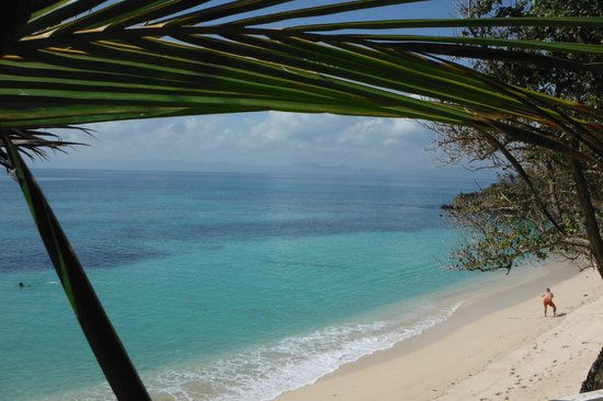 Luxury Bahia Principe Cayo Levantado Don Pablo Collection: Vue de la plage